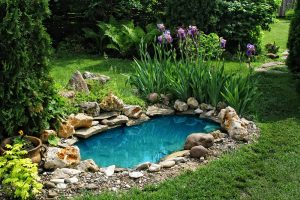 Landscaping Tips: Concrete Pond Construction chicago